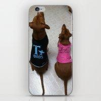 Grease Dogs iPhone & iPod Skin