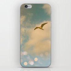 The Lost Gull iPhone & iPod Skin