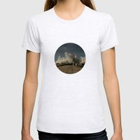 Dark Swell Womens Fitted Tee Ash Grey SMALL
