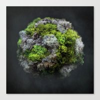 The Moss Globe Canvas Print