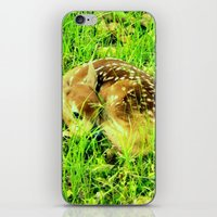 Hidden In The High Grass iPhone & iPod Skin