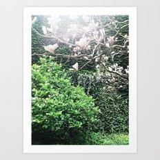 Plastic Magnolias Art Print