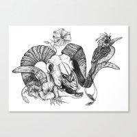 The ramskull and bird Canvas Print