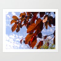 Autumn Is In The Air Art Print