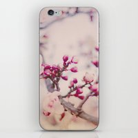 Spring Poetry iPhone & iPod Skin