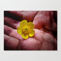 Pickin' Wild Flowers Canvas Print