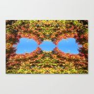 Maple Japan Abstract And… Canvas Print