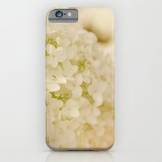 Vintage Nature Botanical White Hydrangea Flower Head iPhone 6 Slim Case