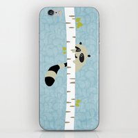 A Shy Raccoon iPhone & iPod Skin