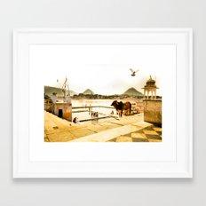 Pushkar Morning Framed Art Print