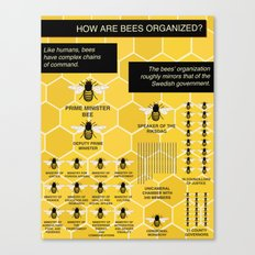 The Organization Of Bees Canvas Print