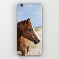 Horse ii iPhone & iPod Skin