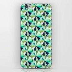 Lake iPhone & iPod Skin