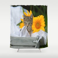 Sweet Tiger Shower Curtain