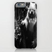 iPhone & iPod Case featuring Koala Bear by Denice Michalek