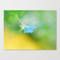 Tiny Butterfly Canvas Print