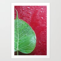 Leaf on red Art Print