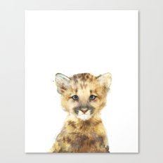 Little Mountain Lion Canvas Print