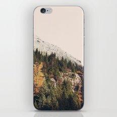 Winter Mountain Morning iPhone & iPod Skin