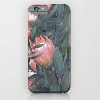 Proteas Party iPhone 6 Slim Case