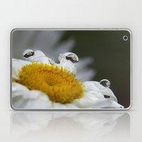 Daisy reflections Laptop & iPad Skin