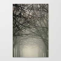 Branches Meeting In The … Canvas Print
