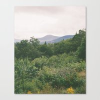 I'm Just A Flower Among … Canvas Print