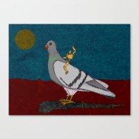 Pigeon Rodeo Canvas Print