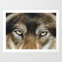 Wolf Eyes Art Print