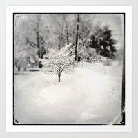 Snowy Elegance Art Print