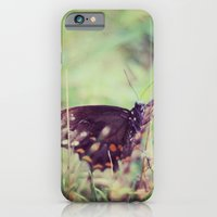 iPhone & iPod Case featuring nature capture by Melissa Dilger