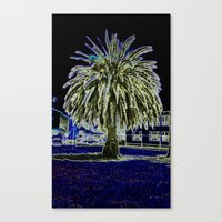 Magic Night With Palm Tr… Canvas Print