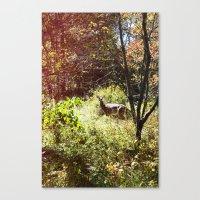 Autumn Deer. Canvas Print