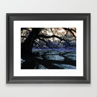 Oak Shadows Lavendar Framed Art Print