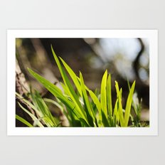 The Green Green Grass Art Print