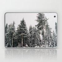 Snowy Paradise Laptop & iPad Skin