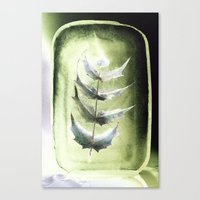 Frozen Mahonia Canvas Print