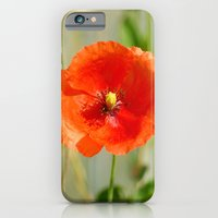iPhone & iPod Case featuring Mohnblume by pASob