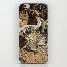 Desert spirit iPhone & iPod Skin