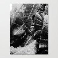 Canvas Print featuring After The Rainfall.... by SmallIslandInTheSun
