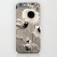 Sunflowers. iPhone 6 Slim Case