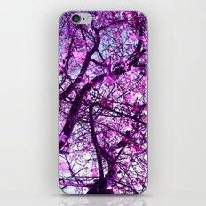 purple tree XXXII iPhone & iPod Skin
