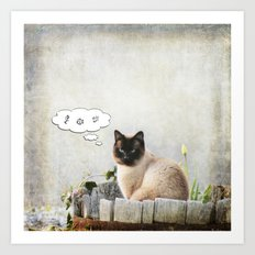Kitty Thoughts Art Print