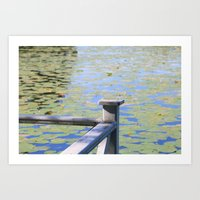 Water with waterlily Art Print