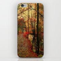 Enchants iPhone & iPod Skin