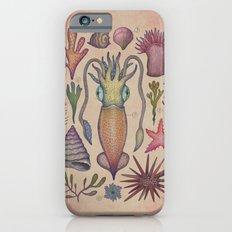 Aequoreus vita III / Marine life III iPhone 6 Slim Case