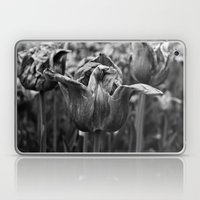 'Dying Tulip Field' Laptop & iPad Skin
