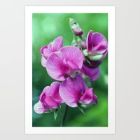 Sweet Bunch Art Print