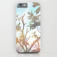 Living In The Sun iPhone 6 Slim Case