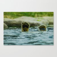 Feet of young pole bear Canvas Print